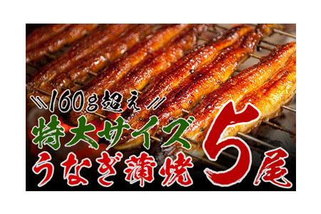 うなぎ蒲焼(長焼5尾入) 寄付金額:20,000円