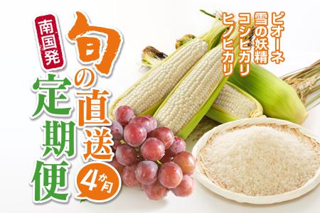 D23 旬の野菜・果物・新米『定期便』(4か月)