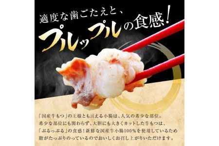 AA33-R2 国産牛もつ鍋&野菜セット(あごだし醤油味)4~5人前《都農町加工品》