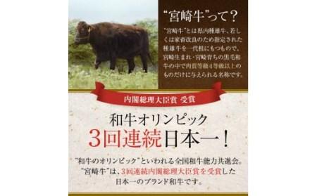 AF3 宮崎牛バラエティ焼肉セット(合計1.5kg)