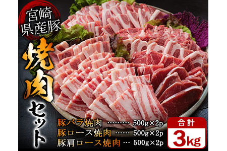 Ab37-1231 豚焼肉バラエティー3kg&粗挽きウインナー180gセット《合計3kg以上》都農町加工品