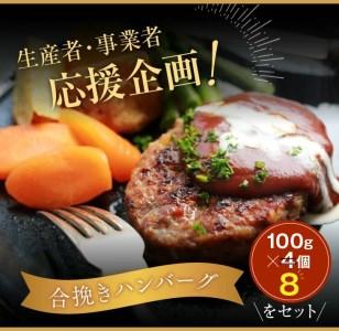 C65 《肉》宮崎牛ロースステーキ(250g×4枚)&合挽きハンバーグ(100g×4個)セット《合計1.4kg》