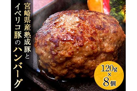 A410 宮崎県産熟成豚とイベリコ豚のハンバーグ120g×8個