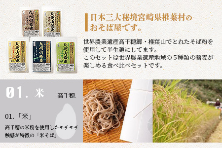 世界農業遺産 九州山蕎麦食べ比べセット 10食分 5町村Ver (ご家庭用パッケージ)