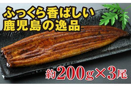 1054 鹿児島県大隅産うなぎ 約200g×3尾