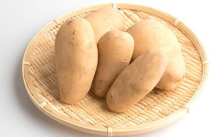 AA-141 枕崎産 コシヒカリと枕崎茶 おばちゃんの手作り季節野菜
