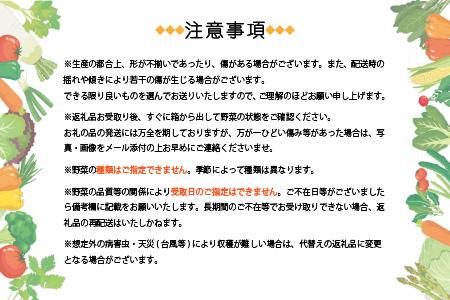 DD-0025 定期便 半年で計3回 鹿児島県枕崎産 旬の野菜 厳選 詰め合わせ 野菜ソムリエ レシピ付き
