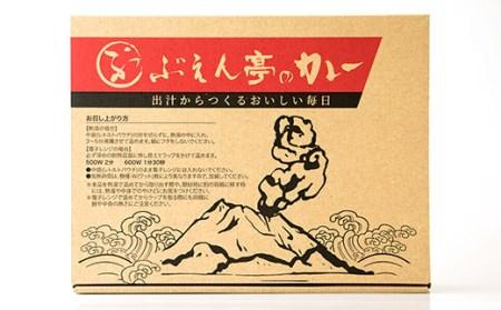 BB-35 枕崎 ぶえん亭 だしカレーセット 10食分 和だしカレー あごだしカレー 2種類