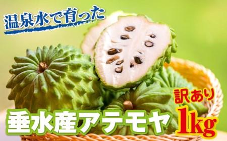 W-2235/【訳あり】 ご自宅用 垂水産 アテモヤ 1kg 旬の果物!