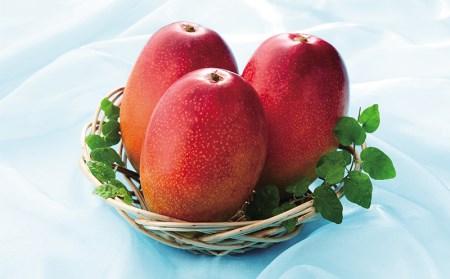 A1-2285/【2019年夏発送】とろける甘さと芳醇な香り!完熟マンゴー1kg