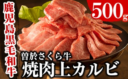 A-16 曽於さくら牛焼肉ギフト(500g!!)