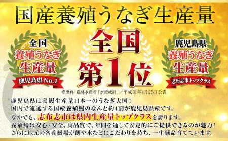 b5-079 【うなぎの駅 祝2周年企画】霧島湧水鰻 蒲焼 5尾