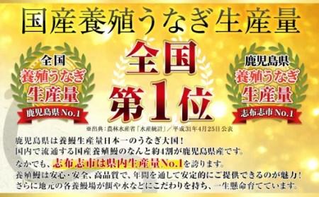 a3-078 うなぎの駅発 志布志の鰻 3尾セット