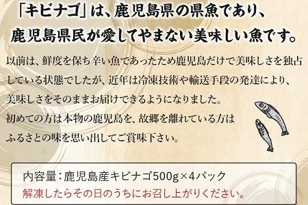 008-65 鹿児島県産キビナゴ丸ごと冷凍2kg