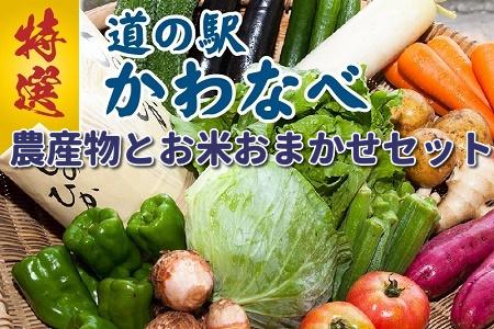 013-05 道の駅から直送!農産物とお米おまかせセット