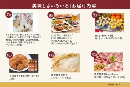 【全12回】南九州トクトク定期便 MK-TK