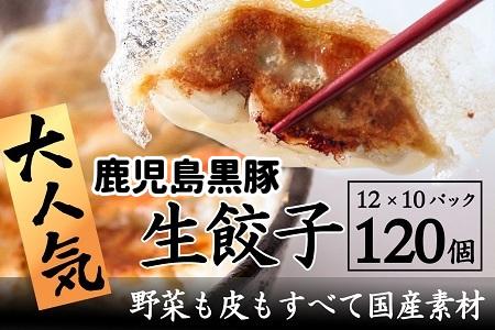 087-01 国産素材にこだわった鹿児島黒豚餃子120個