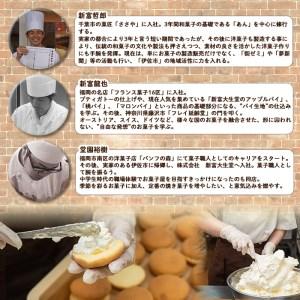 isa270 《毎月数量限定》ご家庭用チーズサンド(10個・箱なし)ブッセ生地にチーズバタークリームをサンドしたお菓子!【新富大生堂】
