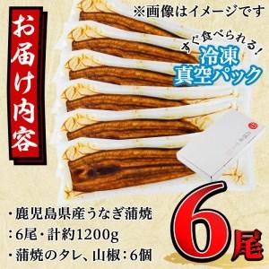 【40355】東串良町のうなぎ蒲焼(無頭)<特大>(200g以上×6尾・タレ、山椒付)【アクアおおすみ】