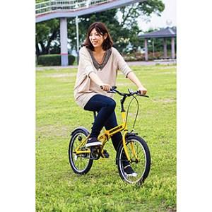 【2610-0060】ハマー折畳自転車 FDB20R MG-HM20R