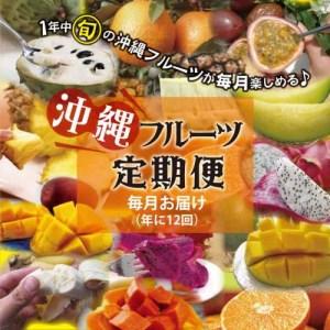 沖縄フルーツ年間定期便(合計12回)
