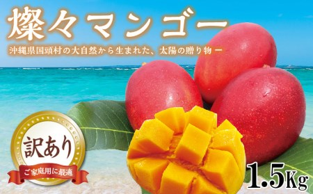 【2020年夏発送】国頭村産 燦々マンゴー【訳あり品1.5Kg】