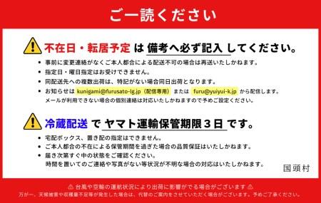 【樹上完熟】燦々マンゴー【優品1Kg(2~3玉)】【2021年6月発送開始】