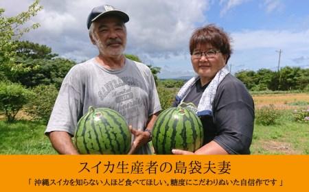 島袋さんの初夏スイカ《5〜7Kg×1⽟》【2021年6月上旬発送予定】