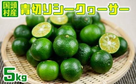 2019年9月より発送【国頭村産】青切りシークヮーサー(5kg)