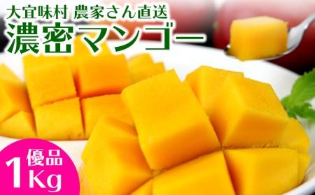 濃密マンゴー《優品・1Kg》【2021年発送】大宜味村農家さんから直送!