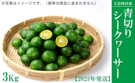 大宜味村 青切りシークワーサー 3Kg【2021年発送】