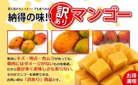 訳あり品!!大宜味村産マンゴー【2Kg・白箱】2021年発送