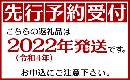 【期間限定】沖縄県産 宜野座村のボゴールパイン(スナックパイン) 3玉