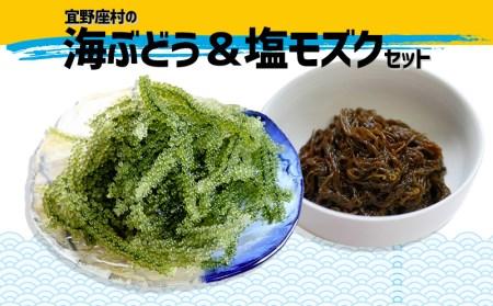 宜野座村の海ぶどう&塩モズクセット