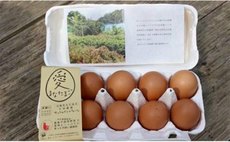 沖縄産平飼い卵「愛たまご60個」