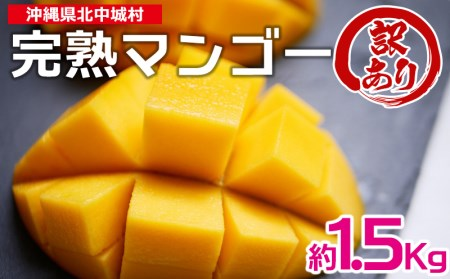 【2022年発送】訳あり品!沖縄県北中城村 完熟マンゴー(中)×1箱(約1.5kg)