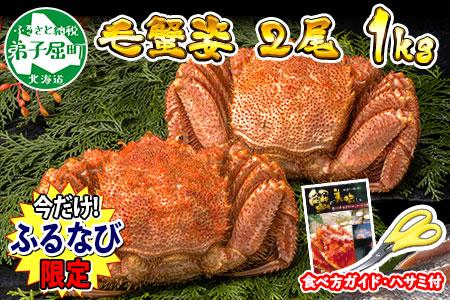 836.【数量限定】 北海道 毛蟹 2尾 計1kg前後 ふるなび限定で一か月以内にお届け