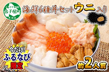 840. 【数量限定】北海道 海鮮丼 雲丹 300g ふるなび限定で一か月以内にお届け