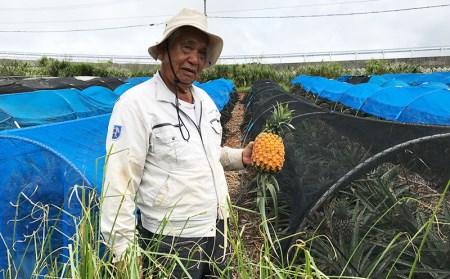 【2021年発送】久米島印商店「ゴールドバレル」黄金パイナップル2個