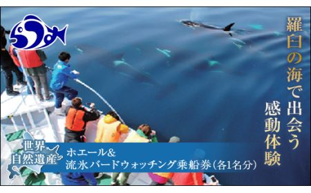 ホエール&流氷バードウォッチング乗船券(各1名分)