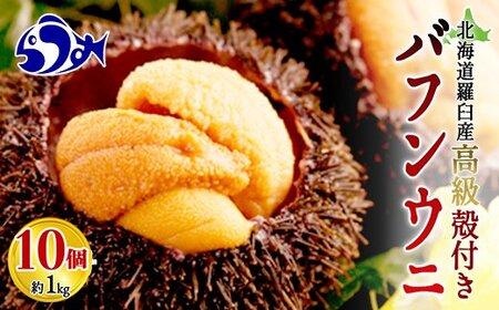 知床羅臼産 殻付きバフンウニ(10個)