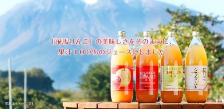 JA相馬村のりんご 無添加りんごジュース詰め合わせ1L×6本【弘前市産・青森りんご】