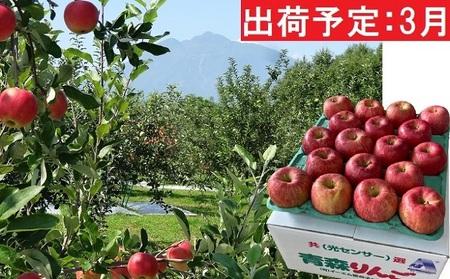 3月 訳あり EM葉取らずサンふじ約10kg 糖度13度以上【弘前市産・青森りんご】