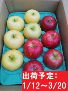 年明け 吹田りんご園 山の完熟サンふじ・王林合計約3kg(詰合せ)津軽広船産