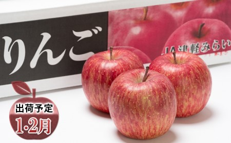年明け 糖度保証サンふじ約5kg 青森県平川市産