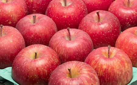 年明け 糖度保証サンふじ約10kg 青森県平川市産
