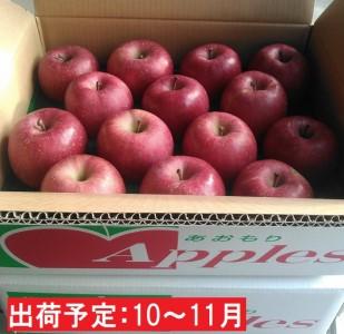 10~11月 【訳あり】キラ農法 完熟りんご シナノスイート約5kg