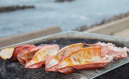 青森県鰺ヶ沢町 生干しイカ 5枚セット ※お申込みから3ヶ月以内の発送になります。青森 イカ いか 国産 魚介