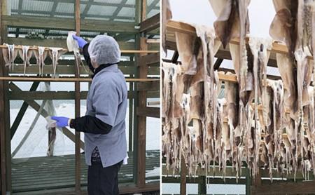 青森県鰺ヶ沢町 生干しイカ 3枚セット ※お申込みから3ヶ月以内の発送になります。青森 イカ いか 国産 魚介