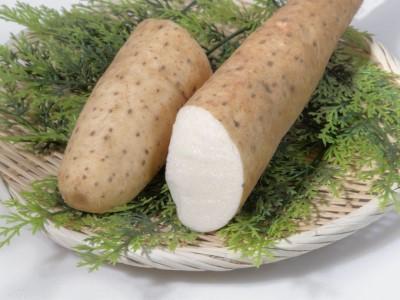 長谷川さんが作った長芋(約3kg)
